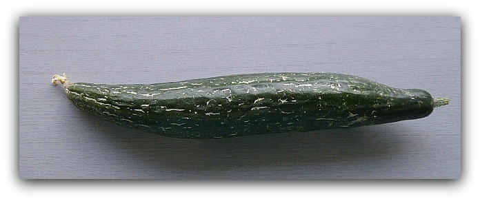 P1030531